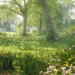 bright hazy sunlight through azalea and daffodil garden