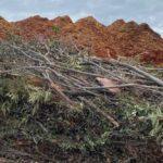 SPVS Green Waste Recycling