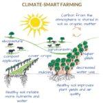 SPVS | Climate-Smart Farming Poster