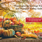 SPVS-Thanksgiving-Sale-2020
