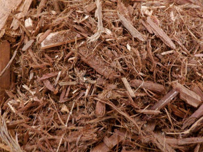 SPVS Shredded Cedar
