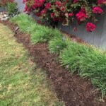 SPVS Monkey Hair Landscape Mulch application