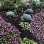 Planters-Blend-Compost-Erosion-Control-Blanket-9-1-21