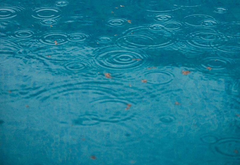 Rain Landscape Solutions   SPVS