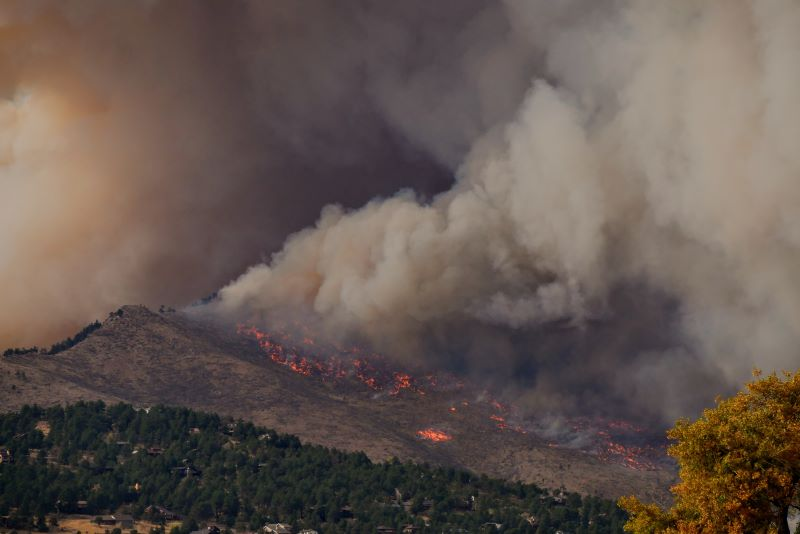 Fireproofing Landscape   SPVS