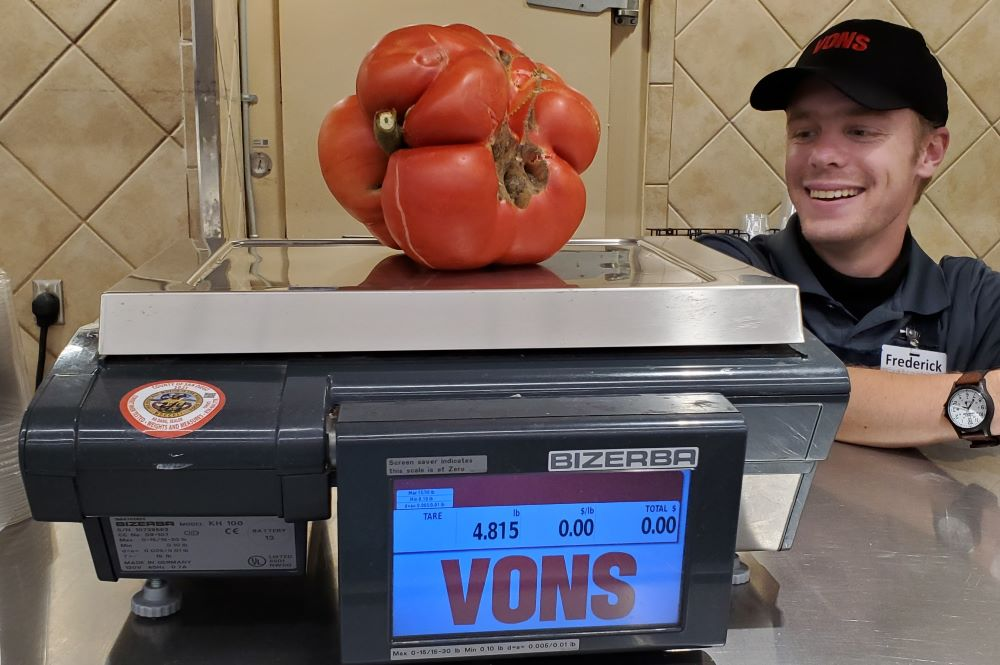 4.82 lb Tomato Grown w SPVS Valleys Best Compost